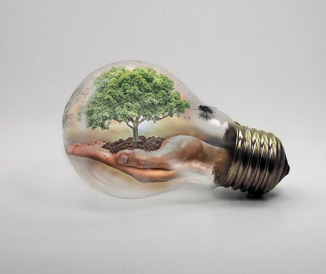bulb-2368396_640