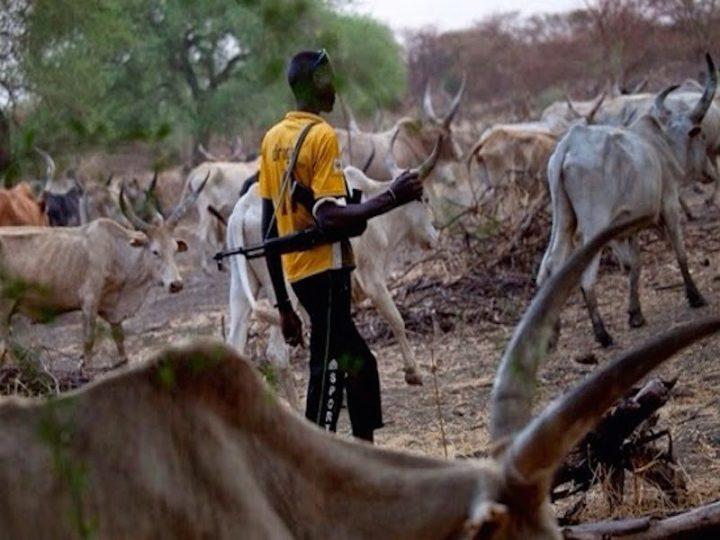 pastori fulani